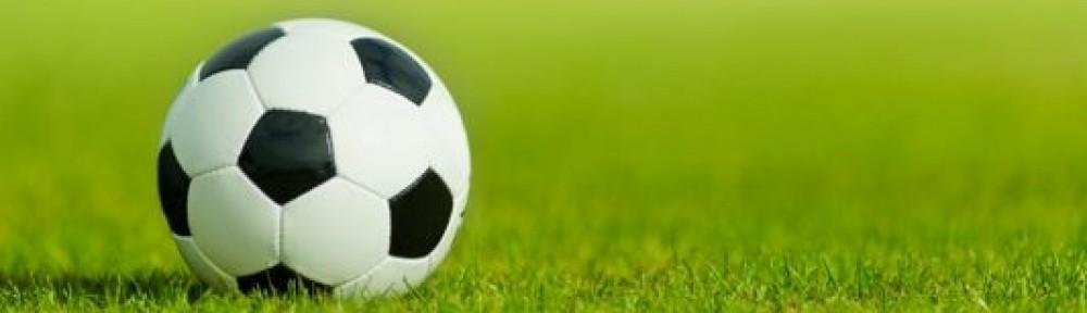 Sport- und Kulturförderverein